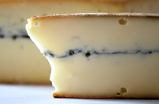 My Cheesy Excuse: A Guest Post by Healthy Sous-Chef Partyologist, Lea Bowen
