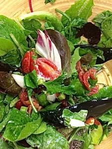 Herb Salad closeup