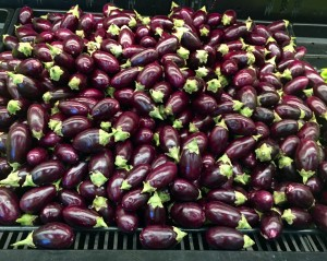 Eggplant in the Indian Market